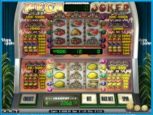 Camilla wins the €52,829 Mega Joker Jackpot!