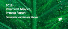 Ger Rainforest Alliance-certifiering resultat?