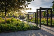 Flera utmärkelser för Skellefteå kommuns förvandling av Stadsparken och Älvbrinken