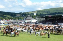 ​​Ultrafast fibre broadband for Royal Welsh Young Farmers