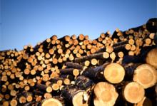 Nöjda skogsägare förväntar sig sämre tider