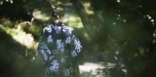 LUGN- OCH RO SKOLAN: Minska din stress med hjälp av naturen
