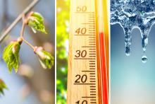 Stadig flere erfarer klimaendringer i egen kommune