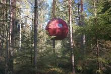 Övernatta bland trädtopparna i Dalarna