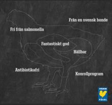 Svensk Fågel sponsrar Årets Kock: Vill främja ökad kunskap och kvalitet på krogen