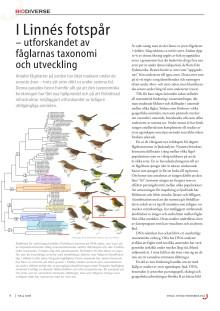 I Linnés fotspår – utforskandet av fåglarnas taxonomi och utveckling