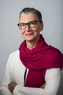 Konstnärsnämndens direktör Anna Söderbäck om budgeten