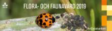 Natur i förvandling - främmande arter och naturvård