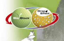 Slik beskytter du mot sopp og alger