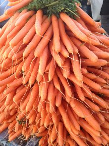 Gulrot - nordmenns favorittgrønnsak