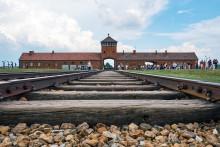 Uppmärksammande av Förintelsens minnesdag