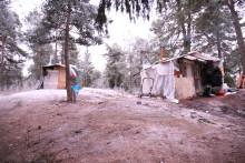 Sverige: Regeringen måste ta sitt ansvar för romer och andra utsatta EU-medborgare