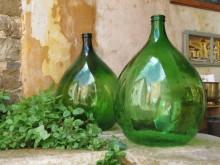 Istria: A Gastronomic Adventure