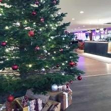 Julklappsinsamling på Djurönäset