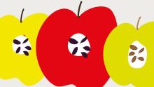 Äppelfestival 23 september vid Naturens hus, Örebro