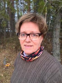 På måndag startar älgjakten i norra Sverige