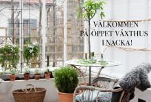 Vik onsdagarna för Sweden Green House