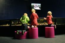 Lär känna livet under ytan, Havets Hus 2012