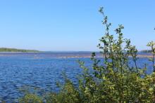 Historiskt beslut taget för att skydda Piteås dricksvatten