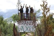 Nationell gruvkritisk demonstration på lördag! Samling Sergelstorg 9:30. Avmarsch 10:30. Mynttorget 11:00–13:00