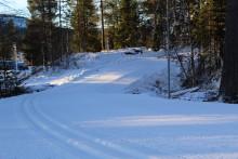 Lofsdalens längdspår öppnar första november