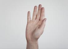 """Pressvisning av """"Limp Wrist"""""""