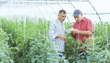 Chr. Hansen and FMC Corporation extend collaboration on natural crop protection
