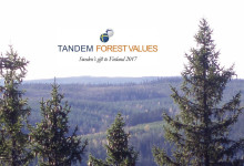 Tandem Forest Values – first call for applications