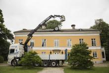 Pressinbjudan: Naturskyddsföreningen i Skånes Storkprojekt hälsar media välkomna till storkmärkning på hög höjd!