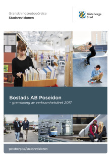 Poseidon – granskning av verksamhetsåret 2017