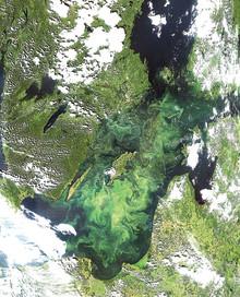 Seminarium: Behöver vi ge Östersjön konstgjord andning?
