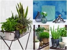 De fyra elementen inspirerar till vårens trender