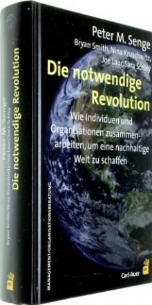 Organisationsberatung und Management: Die notwendige Revolution