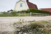 HaV:s rapport om insatser för renare små avlopp överlämnas till regeringen