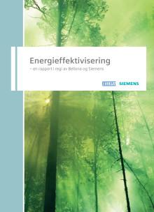Energieffektiviseringsrapporten