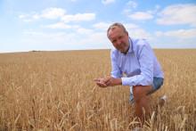 Lantmännens skördeprognos 2018: lägsta skörden på över tjugofem år