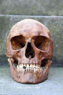 Fire århundreders historier om Holmen gravet frem