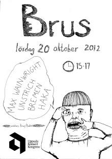 Brus 20 oktober 15.00 - curators Anna-Karin Brus och Tomas Bodén