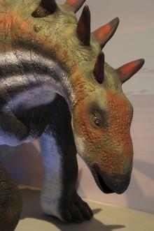 Det händer på Naturhistoriska riksmuseet i december