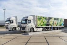 DAF hjälper stormarknadsjätten Jardin Albert Heijn elektrifiera transportverksamheten