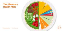 EAT–Lancet rapporten: Ett angeläget inlägg i hälso- och klimatfrågan