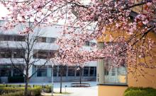 Högskolan i Gävle är populäraste högskolan när det gäller program
