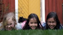Barntandvårdskongress till Borås