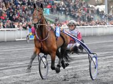 Tre svenskhopp i Prix de France 2013