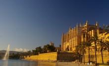 7 måsten i Palma!