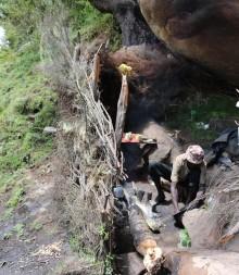 Kenya: Urfolket Sengwer utsätts för tvångsvräkningar och fråntas sin traditionella mark