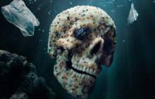 Får fisken plast?   2050 beräknas havet innehålla mer plast än fisk. Läs mer i tidningen Kretslopp.