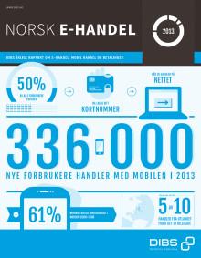 Norsk E-handel 2013
