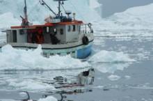 2013 års fiskekvoter för Västerhavet klara