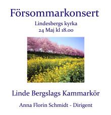 Linde-Bergslags Kammarkör håller Försommarkonsert